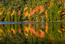 Autumn Reflections, Bubble Pond, Acadia National Park, Maine, USA