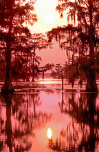 USA, Louisiana. Sunset On A Atchafalaya Basin Bayou.