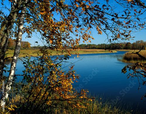 Vászonkép USA, Minnesota, Mississippi River Fall Colors