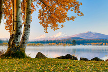 USA, Oregon, Bend, Fall At Bla...