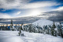 Deschutes National Forest, Oregon, USA. Mt. Bachelor From Mt. Tumalo In Winter.