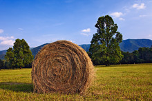 Rolled Hay Bale, Cades Cove, Great Smoky Mountains National Park, Tennessee