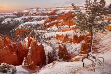 USA, Utah, Bryce Canyon Nation...
