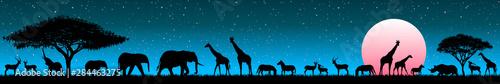 Fotomural Animals in the wild savannah at sunrise