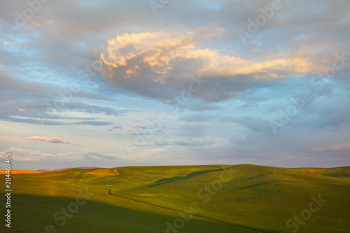 USA, Washington State, Palouse Country, Rolling Hills of Green Spring Wheat and Wallpaper Mural