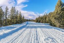 USA, Wyoming, Yellowstone National Park, Grand Loop Road