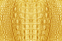 Gold Leather Crocodile Texture For Background