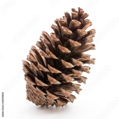 Fotografie, Obraz  Christmas pine cone on white background.