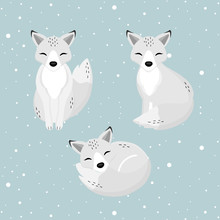 Hand Drawn Arctic Fox In The W...
