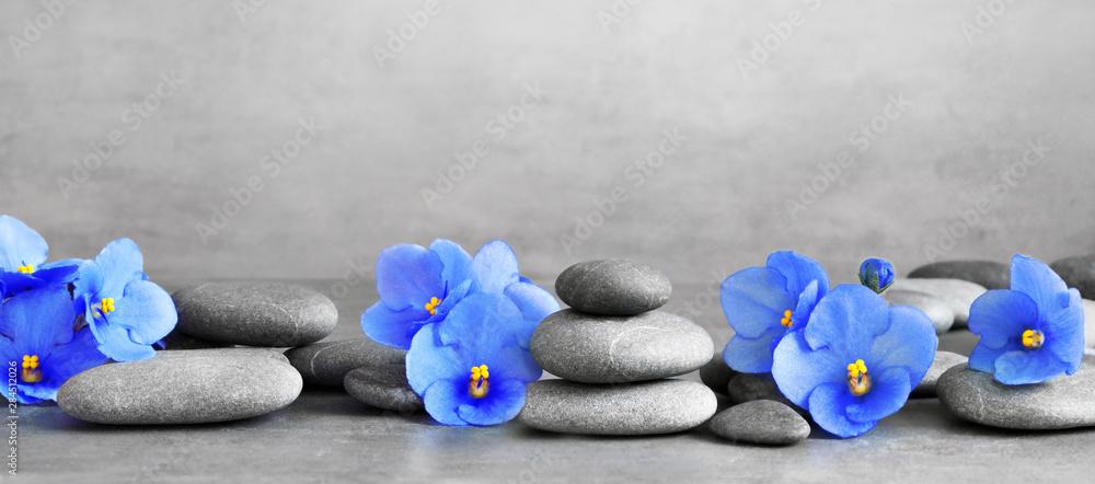 Fototapety, obrazy: Zen stones and violet flowers on grey background.