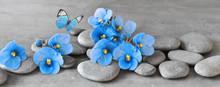 Zen Stones And Violet Flowers ...
