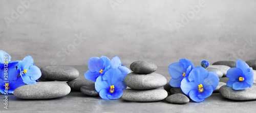Poster Fleuriste Zen stones and violet flowers on grey background.