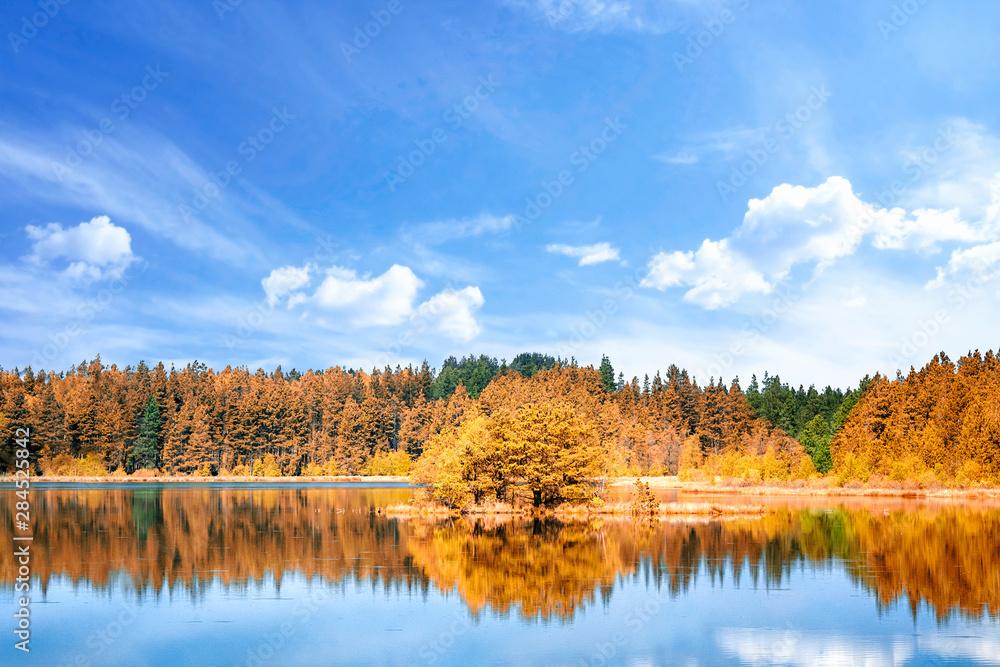 Fototapeta Autumn lake scenery with colorful trees