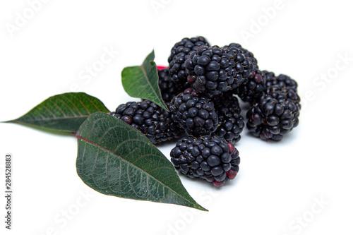 Boysenberry  isolated on a white background. Tapéta, Fotótapéta