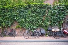 Street Scene From Amsterdam Wi...