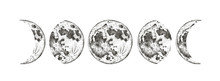 Moon Phases Isolated, Hand Dra...