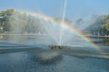Fototapeta Tęcza - Rainbow in the fountain park nature