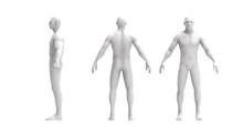 Human Body 3d Rendering Of A Human Body Isolated In White Background