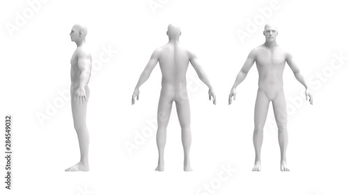 Obraz na plátně Human body 3d rendering of a human body isolated in white background