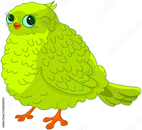 Poster Magie Green Bird