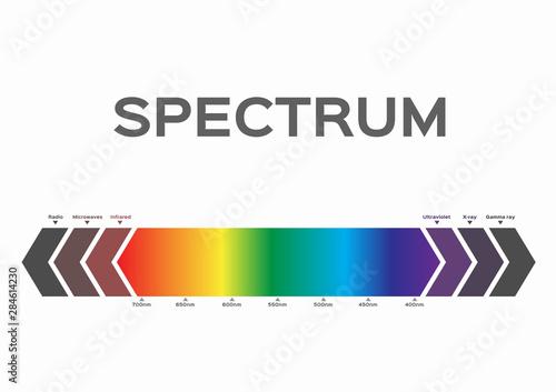 Cuadros en Lienzo infographic of Visible spectrum color. sunlight color