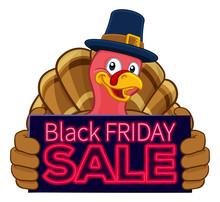 Pilgrim Turkey Thanksgiving Bi...