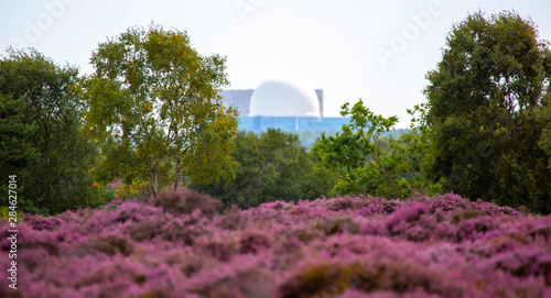 Sizewell Nuclear Power Station From a Distance Canvas Print