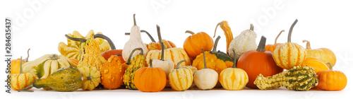 Printed kitchen splashbacks Fresh vegetables Assortiment of pumpkins on white