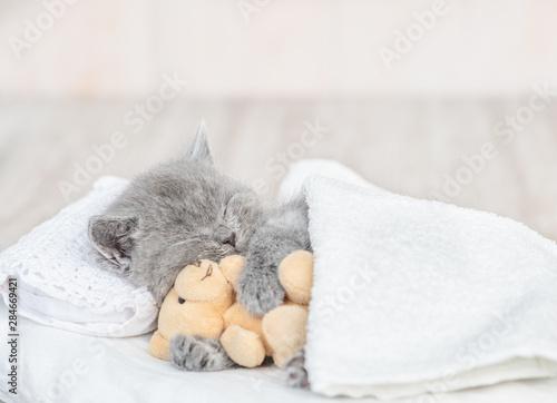 Fototapeta Sleeping kitten hugging toy bear on pillow under blanket at home