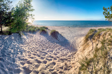 Slowinski National Park on the Baltic Sea coast, near Leba, Poland. Beautiful sandy beach, dune vegetation and coastal landscape on the walking trail between Leba and Moving Dunes.