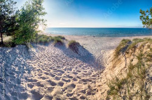 Obraz Slowinski National Park on the Baltic Sea coast, near Leba, Poland. Beautiful sandy beach, dune vegetation and coastal landscape on the walking trail between Leba and Moving Dunes. - fototapety do salonu