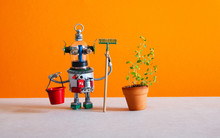 Automation Gardening Concept. ...