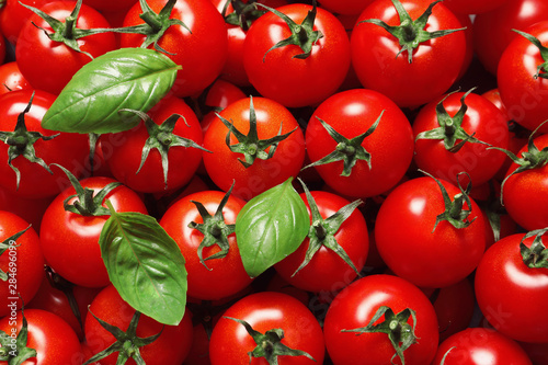 Delicious ripe cherry tomatoes and basil leaves as background, top view