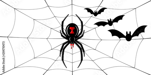 Photo Spider Black Widow, cobweb, bats
