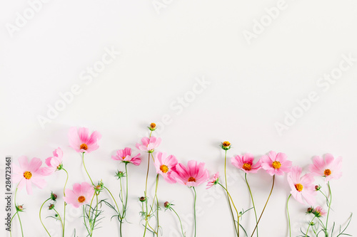 Beautiful flowers composition. Pink cosmos flowers on white background. Flat lay, top view, copy space