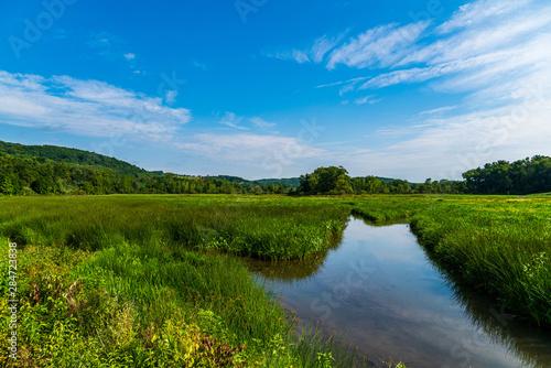 Obraz landscape with pond and blue sky - fototapety do salonu