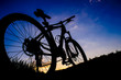 canvas print picture - Mountainbike