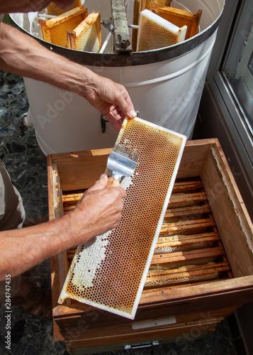 Photo Apiculture - extraction du miel - désoperculation d'un cadre
