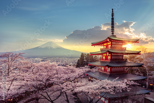 Tuinposter Blauwe jeans Fujiyoshida, Japan Beautiful view of mountain Fuji and Chureito pagoda at sunset, japan in the spring with cherry blossoms