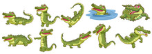 Crocodile Vector Set Graphic Clipart Design