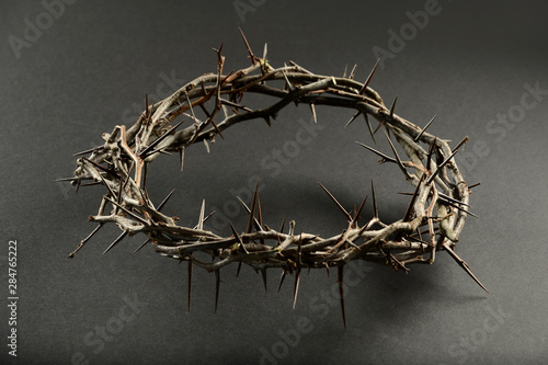 Crown of Thorns Over Neautral Background Fototapete