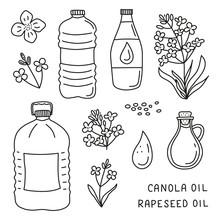 Set Of Doodle Canola Oil And F...