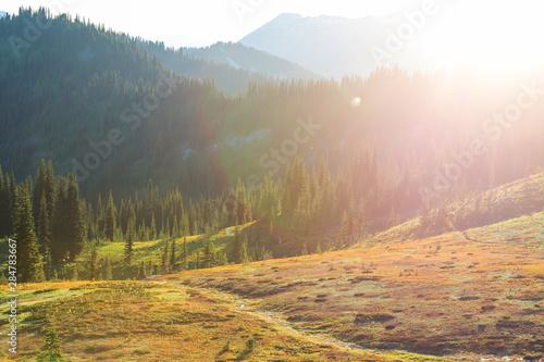 Fototapeta Summer mountains obraz na płótnie