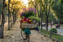 Flower Basket On Bike Of Street Vendor On Hanoi Street. Yellow Leaf Trees. Autumn Or Winter Season