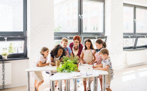 Fotomural  A group of small school kids with teacher standing in circle in class, planting herbs