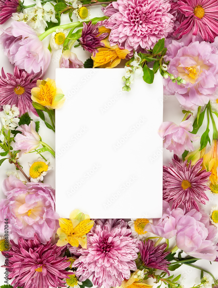 Fototapety, obrazy: Beautiful pink flowers on white background.