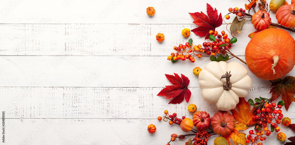 Fototapety, obrazy: Festive autumn decor from pumpkins, berries and leaves on a white  wooden background. Concept of Thanksgiving day or Halloween. Flat lay autumn composition with copy space.