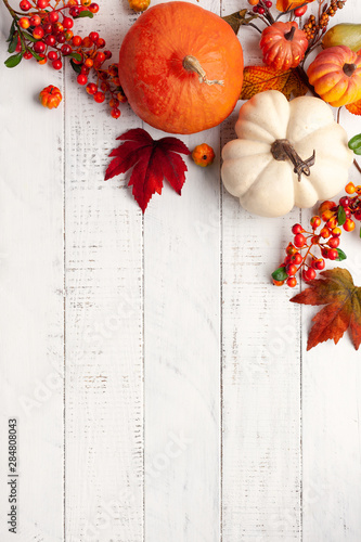 Obraz Festive autumn decor from pumpkins, berries and leaves on a white  wooden background. Concept of Thanksgiving day or Halloween. Flat lay autumn composition with copy space. - fototapety do salonu