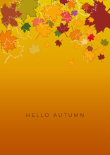 Autumn Sale Background, Layout Decorate With Leaves Of Autumn. Poster And Frame Leaflet Or Web Banner. Vertical Vector Template.