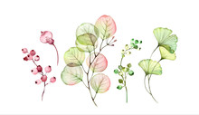 Watercolor Transparent Floral ...